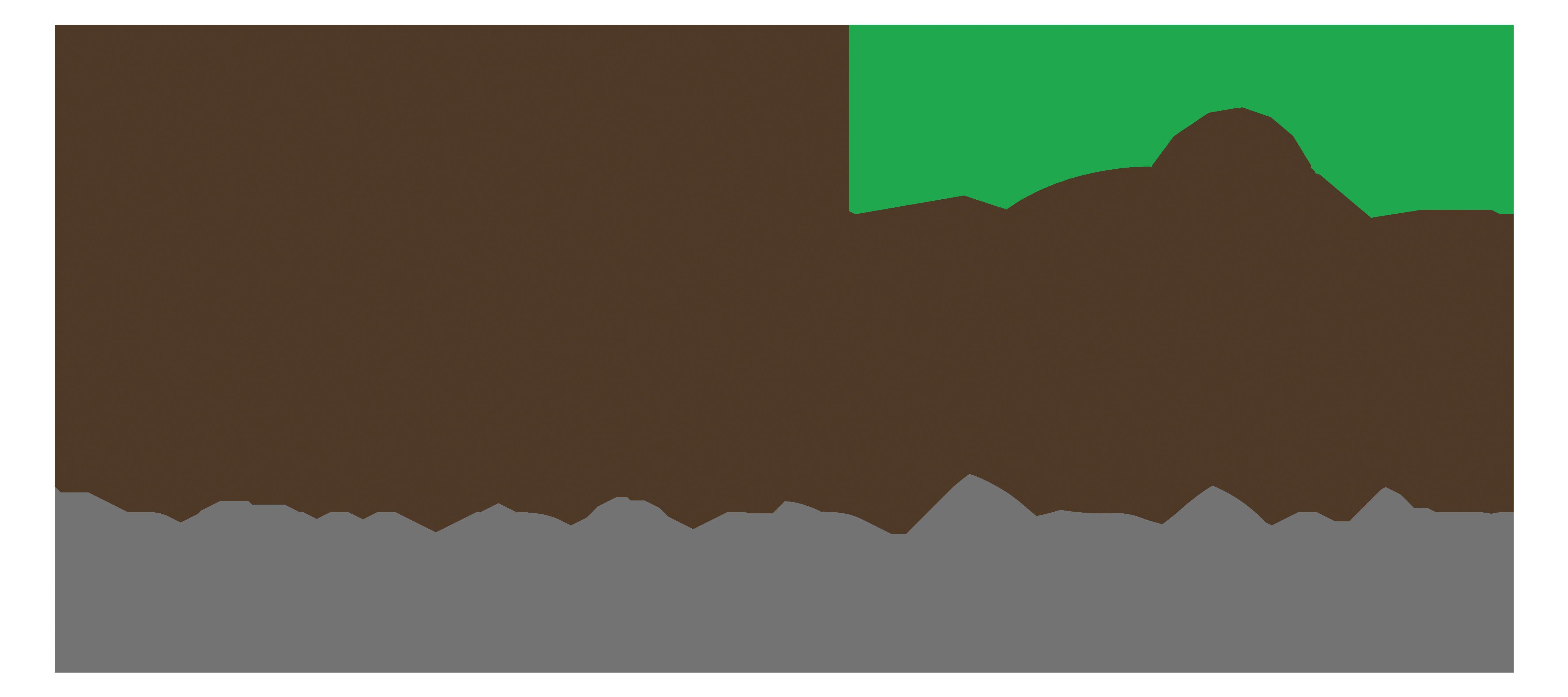 Tekton Building